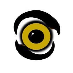 Talon Television